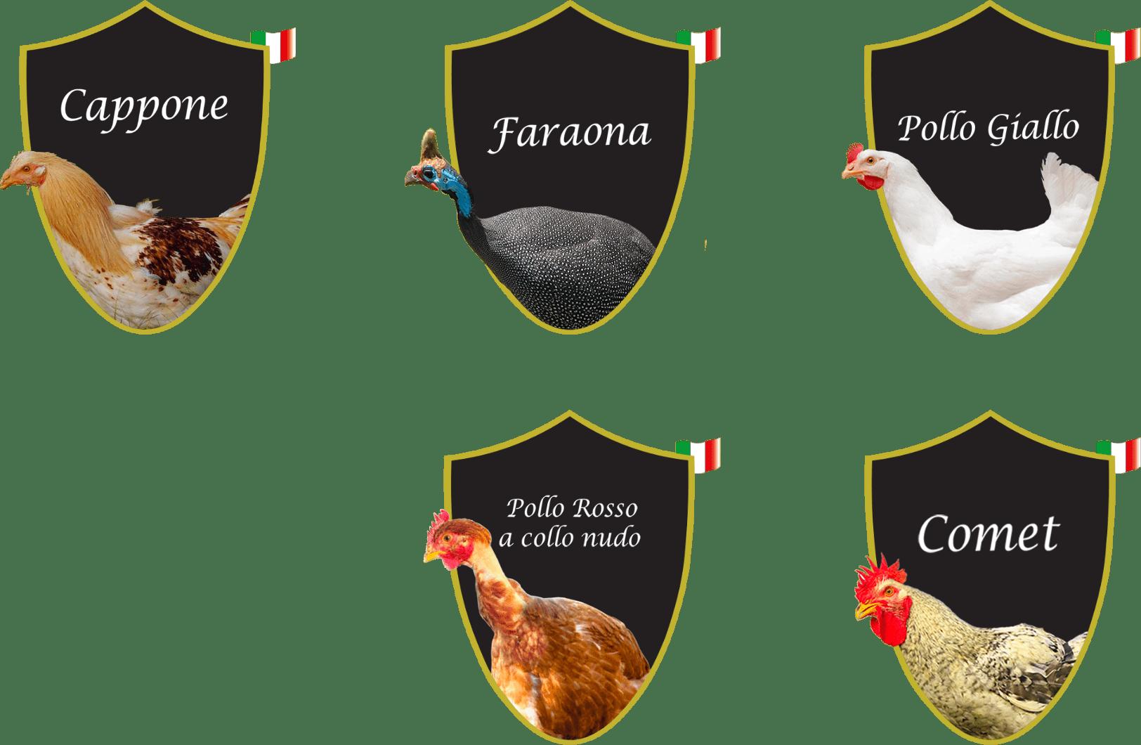prodotti cinelli produzione carni bianche in toscana